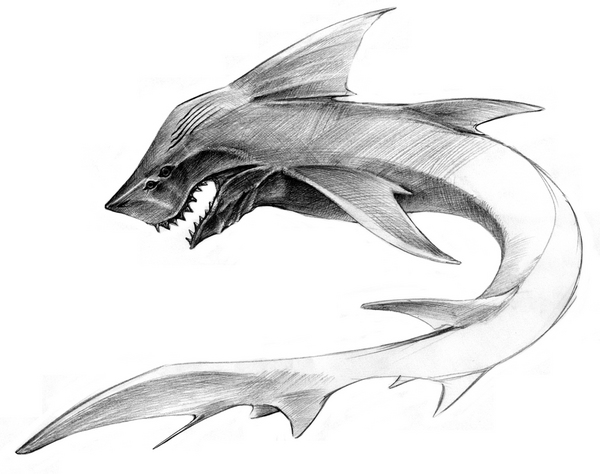 Shark_001s.jpg