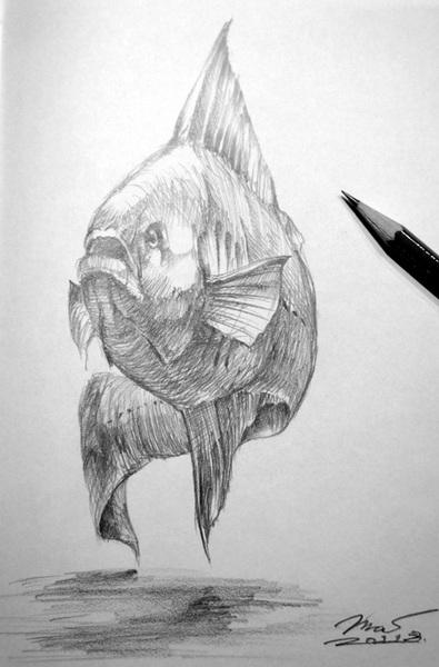 Sketch_Fish_201108_02.jpg