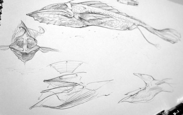 Sketch_Fish_201301.jpg
